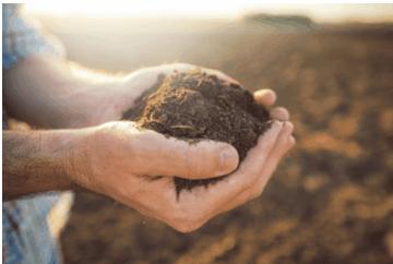 terra acida e terra calcarea