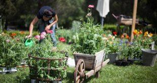 Garden therapy dimagrire con il giardinaggio